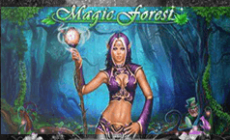 Игровой автомат Magic Forest
