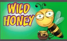 Игровой автомат Wild Honey