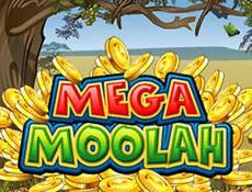 Игровой автомат Игровой автомат Mega Moolah выдал рекордную сумму джек-пота