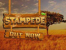 Игровой автомат Бетсофт презентовали новый игровой автомат Stampede