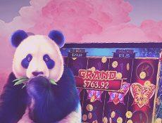 Игровой автомат Pragmatic Play выпустили новый слот Panda's Fortune